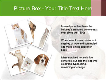0000061229 PowerPoint Templates - Slide 23