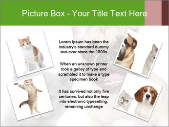 0000061229 PowerPoint Templates - Slide 24