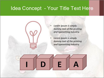 0000061229 PowerPoint Templates - Slide 80