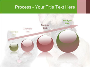 0000061229 PowerPoint Templates - Slide 87