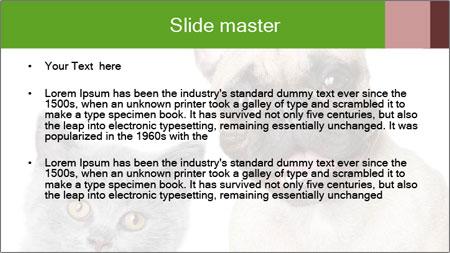 0000061229 PowerPoint Template - Slide 2