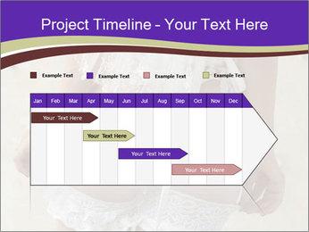0000061241 PowerPoint Templates - Slide 25