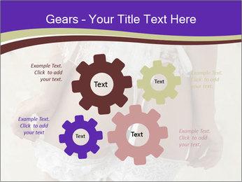 0000061241 PowerPoint Templates - Slide 47