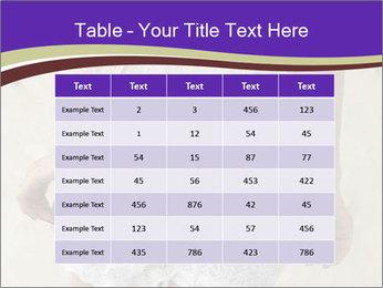 0000061241 PowerPoint Templates - Slide 55