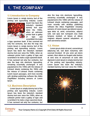 0000061243 Word Template - Page 3