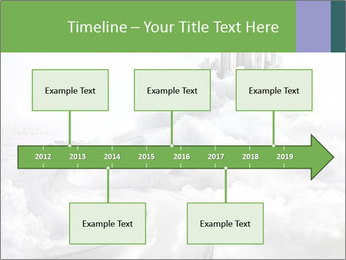 0000061248 PowerPoint Templates - Slide 28