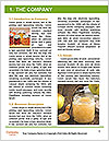 0000061251 Word Template - Page 3