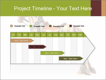 0000061253 PowerPoint Template - Slide 25