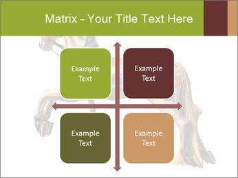 0000061253 PowerPoint Template - Slide 37