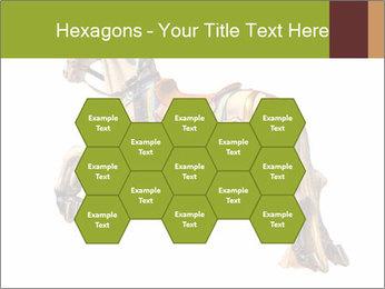 0000061253 PowerPoint Template - Slide 44