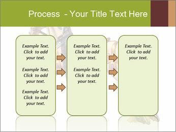 0000061253 PowerPoint Template - Slide 86