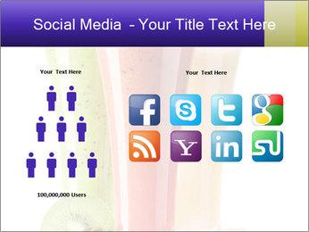 0000061254 PowerPoint Templates - Slide 5