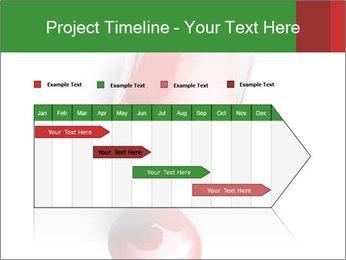 0000061256 PowerPoint Templates - Slide 25