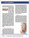 0000061261 Word Template - Page 3