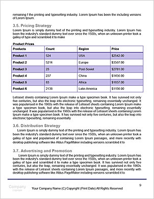 0000061269 Word Template - Page 9