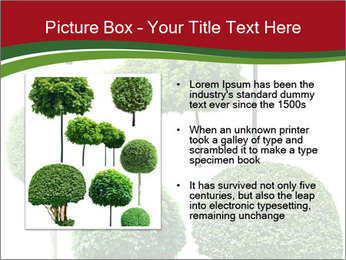 0000061272 PowerPoint Template - Slide 13