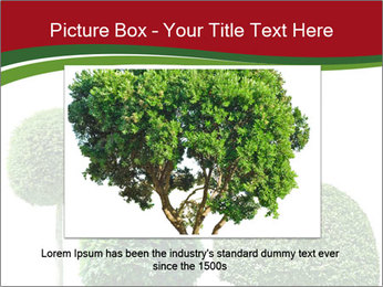 0000061272 PowerPoint Template - Slide 15
