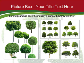 0000061272 PowerPoint Template - Slide 19