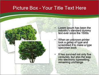 0000061272 PowerPoint Template - Slide 20