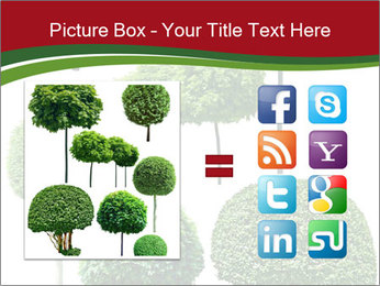 0000061272 PowerPoint Template - Slide 21