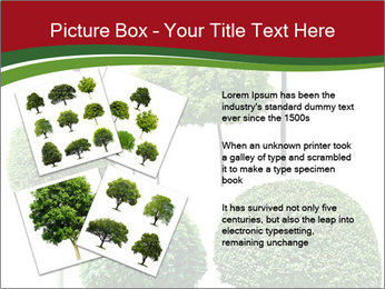 0000061272 PowerPoint Template - Slide 23