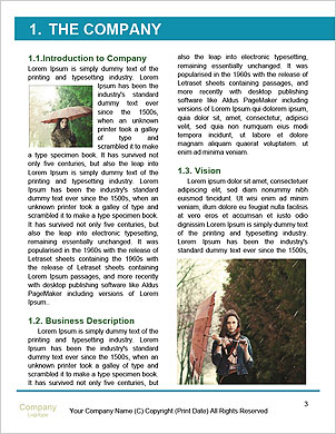 0000061278 Word Template - Page 3