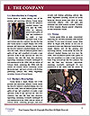 0000061282 Word Templates - Page 3
