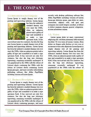 0000061285 Word Template - Page 3