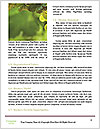 0000061285 Word Template - Page 4