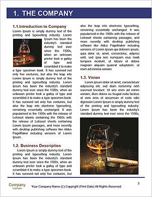 0000061297 Word Template - Page 3