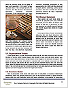 0000061297 Word Template - Page 4