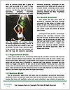 0000061307 Word Templates - Page 4