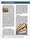 0000061312 Word Template - Page 3