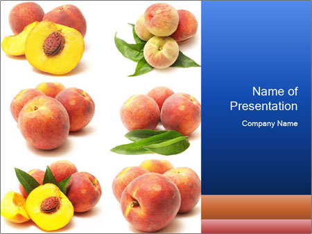 0000061322 PowerPoint Template