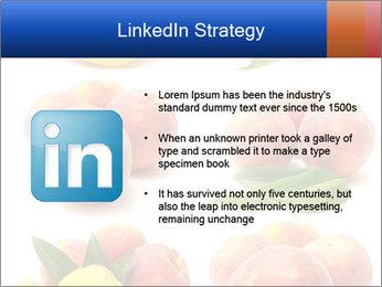 0000061322 PowerPoint Template - Slide 12