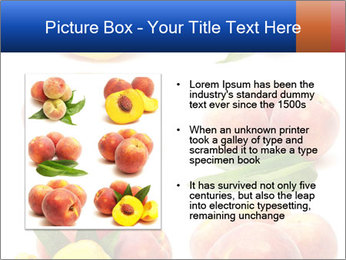 0000061322 PowerPoint Template - Slide 13