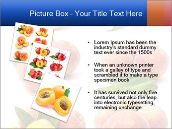 0000061322 PowerPoint Template - Slide 17