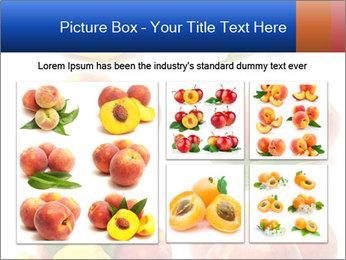 0000061322 PowerPoint Template - Slide 19