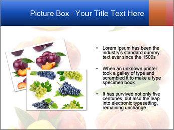 0000061322 PowerPoint Template - Slide 20