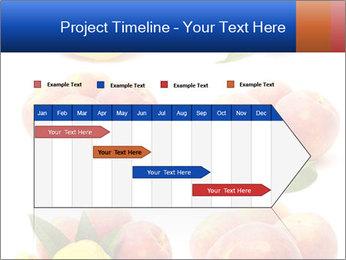 0000061322 PowerPoint Template - Slide 25