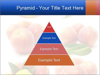 0000061322 PowerPoint Template - Slide 30