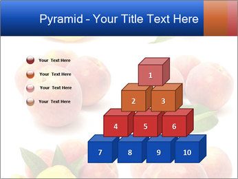 0000061322 PowerPoint Template - Slide 31