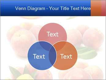 0000061322 PowerPoint Template - Slide 33