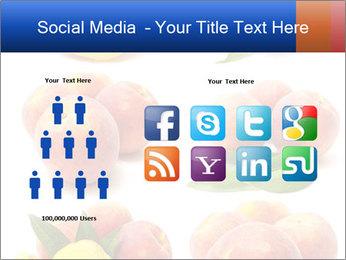 0000061322 PowerPoint Template - Slide 5