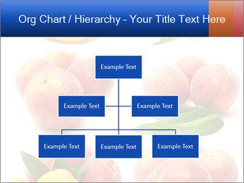 0000061322 PowerPoint Template - Slide 66
