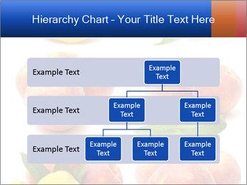 0000061322 PowerPoint Template - Slide 67
