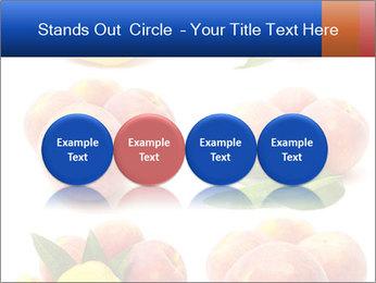 0000061322 PowerPoint Template - Slide 76