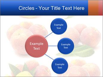 0000061322 PowerPoint Template - Slide 79