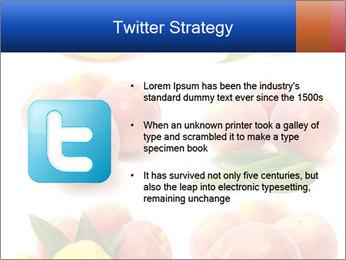 0000061322 PowerPoint Template - Slide 9