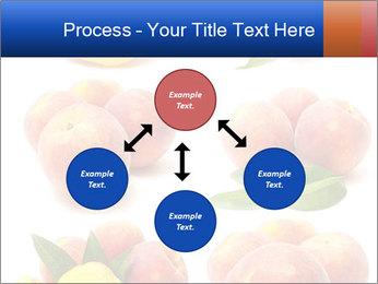 0000061322 PowerPoint Template - Slide 91
